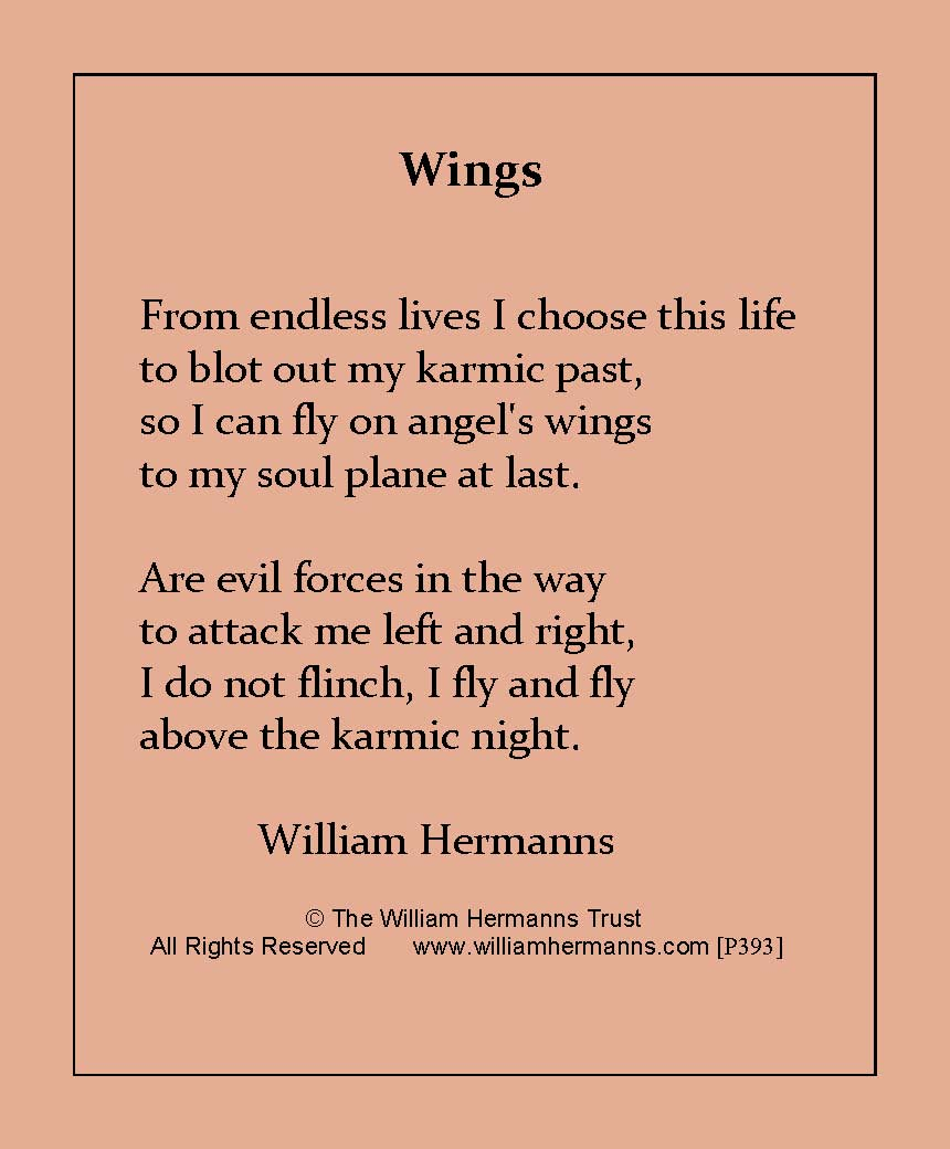Wings by William Hermanns